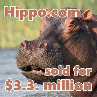 """超2145万元交易!这是你见过的史上最贵""""河马""""!"""